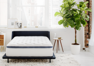 Winkbed Mattress Review